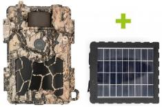 Fotopast OXE Spider 4G a solární panel